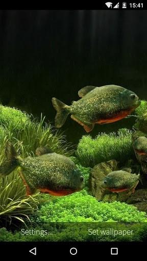 3D Fish Aquarium для Андроид