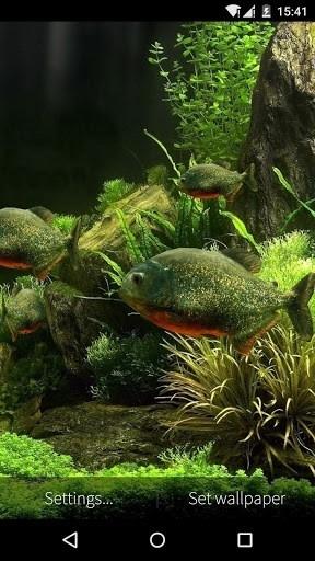 3D Fish Aquarium для Android