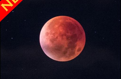 Blood Moon для Андроид скачать бесплатно
