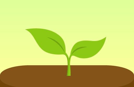 Forest: Будь сосредоточенным для Андроид скачать бесплатно