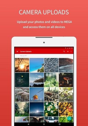 Приложение MEGA для Андроид