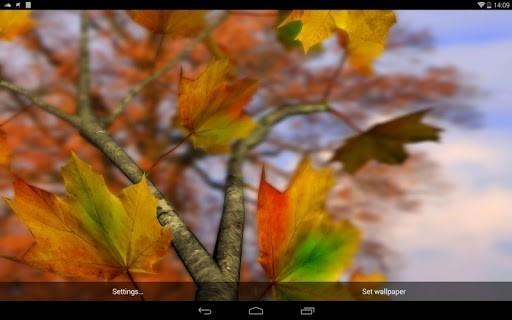 Скриншот Autumn Leaves in HD Gyro 3D Parallax Wallpaper для Андроид