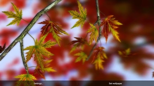 Autumn Leaves in HD Gyro 3D Parallax Wallpaper для Android