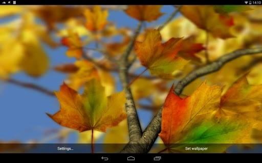 Приложение Autumn Leaves in HD Gyro 3D Parallax Wallpaper для Андроид