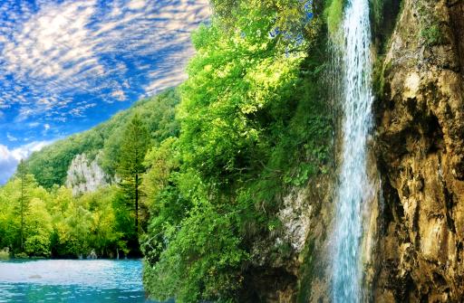 Лесной водопад PRO живые обои для Андроид скачать бесплатно